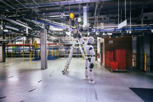 Handyman robot
